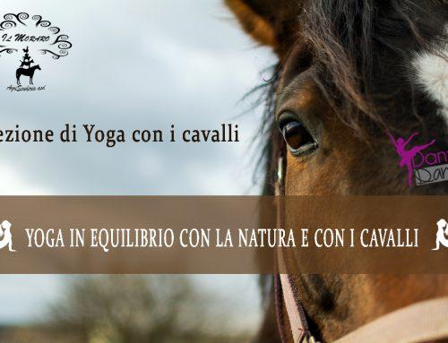 Yoga&Cavalli